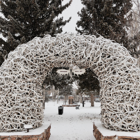 The City Guide to Jackson Hole, Wyoming