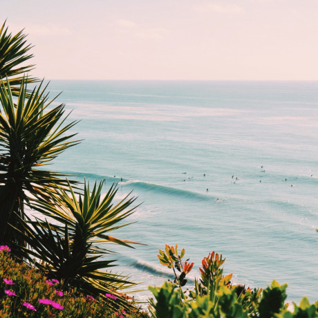 Our Hometown Guide to 36 Can't Miss Spots in Encinitas