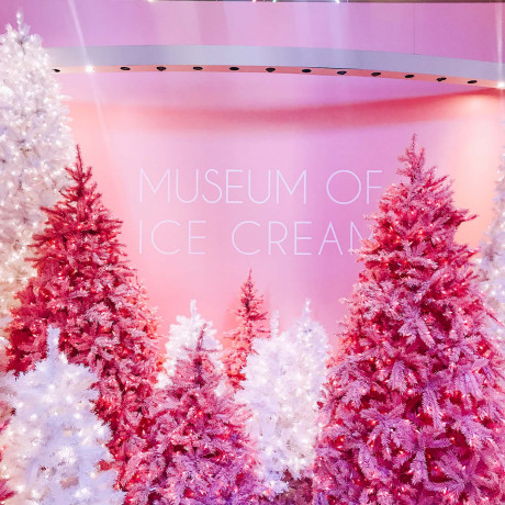 Everything You've Always Wanted to Know About The Museum of Ice Cream