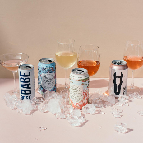 Our Team's Review of 6 Canned Wines for Summer Parties