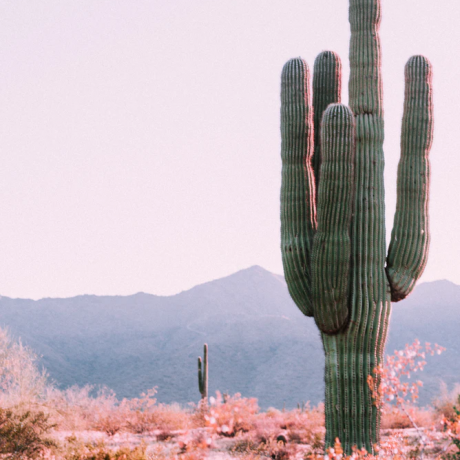 15 Reasons Arizona Is The Ultimate Adventure to Gift This Season