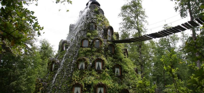 The Patagonian Rainforest Is Giving You the Treehouse of Your Childhood Dreams