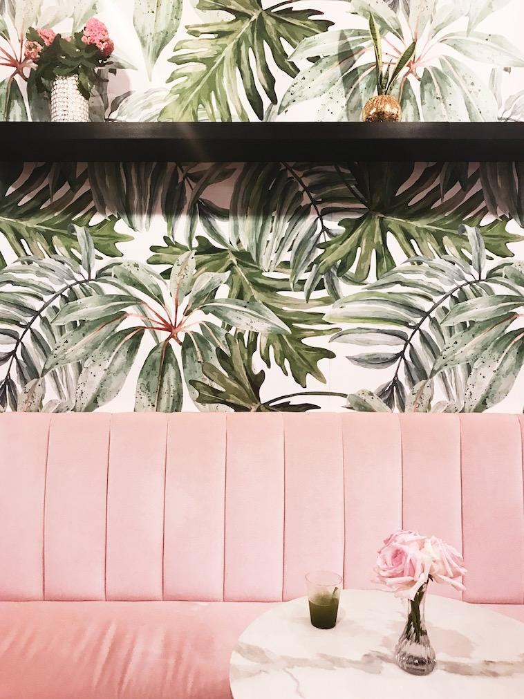 Blush velvet couches and palms was the perfect touch for San Diego's first matcha shop!