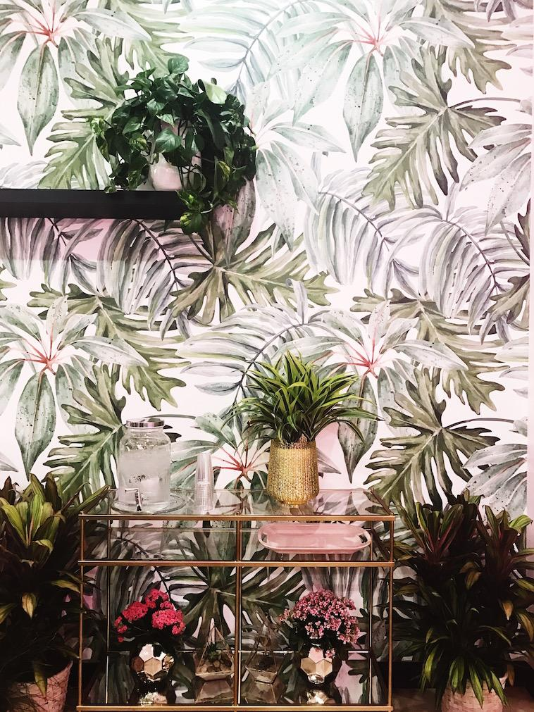 Plants and palms happily overwhelm the walls of San Diego's newest venue, Holy Matcha.