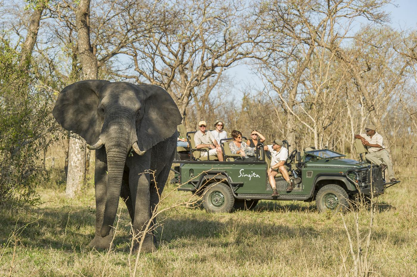 Complete your birthday bucket list with a safari through South Africa's national parks - Singita Castleton.