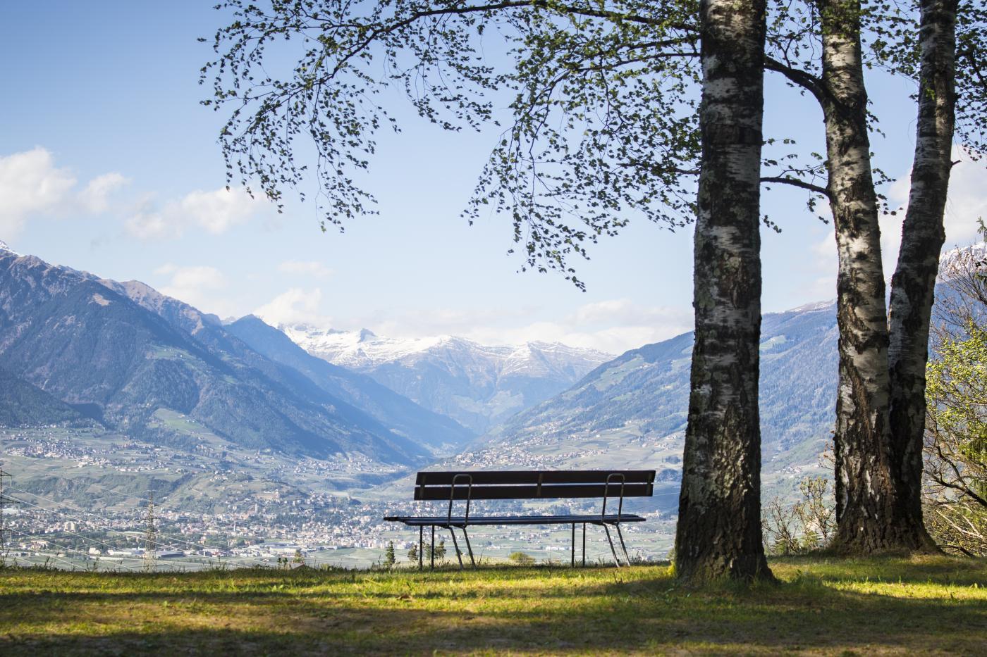 Waldof Italy