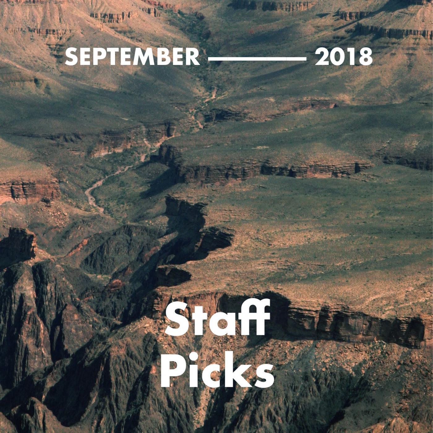 Staff Picks Playlist by The Venue Report