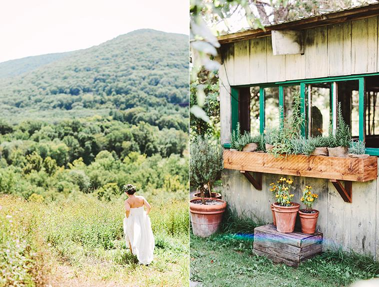 Blooming Hill Farm in New York