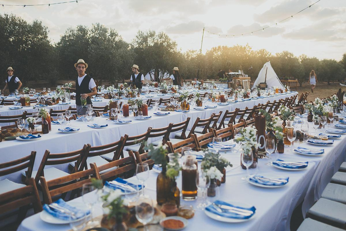 Wedding in an Olive Grove