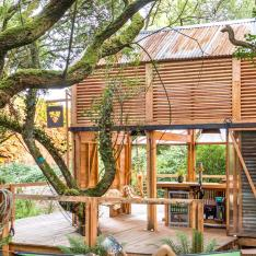 This Beer Company Built a Treehouse Cabin in the Woods for You to Stay In