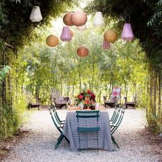 See How a Former Domino Magazine Editor Hosts Dinner Under a Willow Tree Canopy