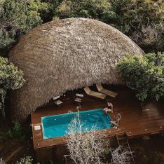 Book Your Safari Beach Honeymoon on the Southern Coast of Sri Lanka