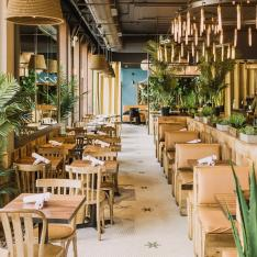 Brunch With Tacos and Tequila at New York's Mexicue