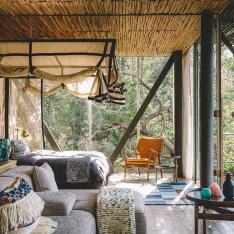 These South African Luxury Treehouses Just Unveiled Their New Look