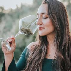 These Northern California Pop-Up Events Combine Wine, Cannabis, and Vineyard Views