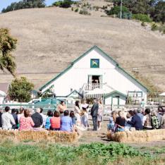 Harley Farms Goat Dairy : Pescadero, California