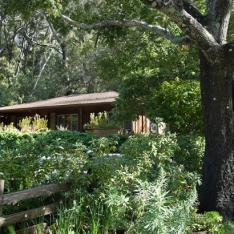 Glen Oaks Big Sur + Big Sur Roadhouse:  Big Sur, California