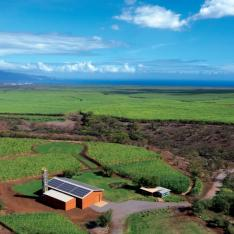Ocean Vodka Organic Farm & Distillery : Kula, Maui, Hawaii