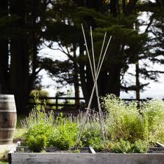 Orchard Keepers : South Victoria, Australia