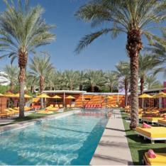 Reporter Roundup : Coolest Pool Party Venues in the USA