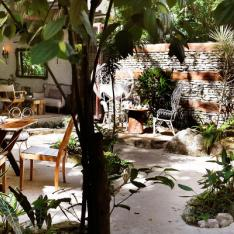A Playa Del Carmen Boutique Beach Hotel Perfect for Intimate Gatherings