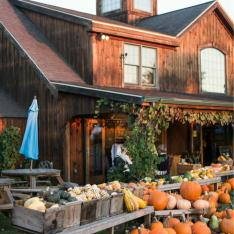 Host a Holiday Clambake on an Orchard