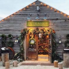 Brunch Bucket List of the Week: A Festive Holiday Brunch In An Antique Greenhouse