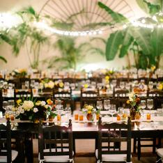What Happens When Mixologists Get Married in Mexico