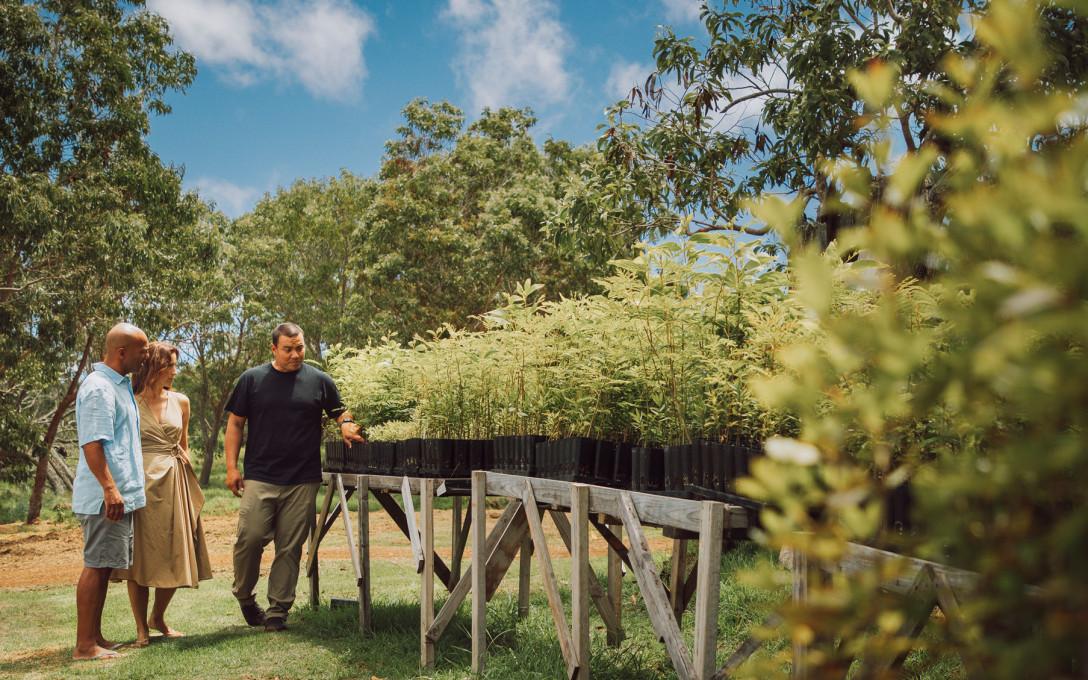 'Iliahi (Sandalwood) Spa Experience at Four Seasons Hualalai