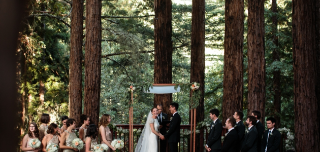 Magical Redwood Wedding