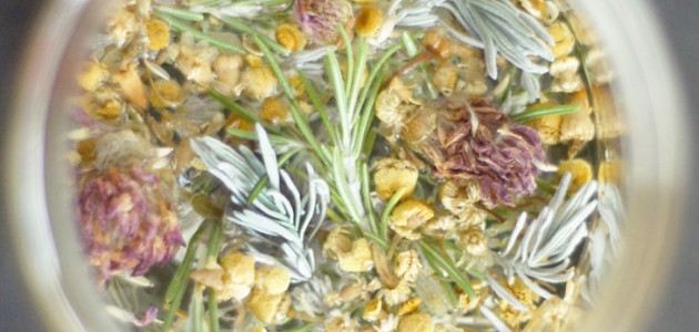 Spring Botanicals and Infusions Workshop, April 12th, $35