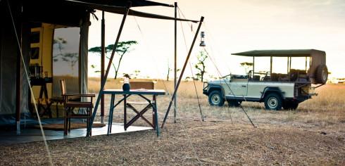 Guided Safari Walks