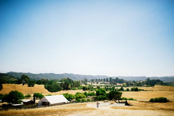 Spreafico Farms