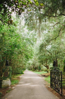 Magnolia Plantation and Gardens