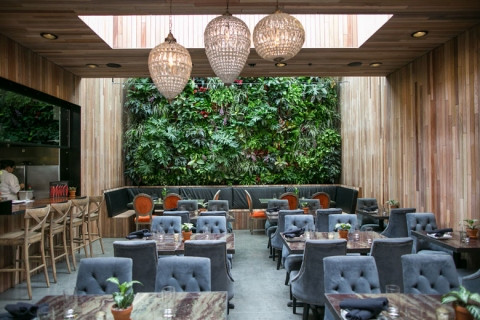 The Patio on Goldfinch