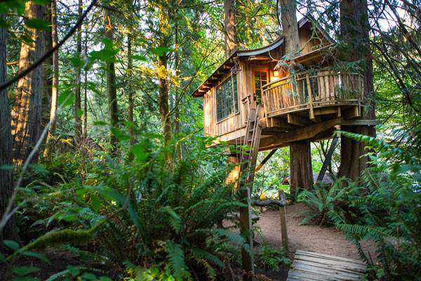 TreeHouse Point