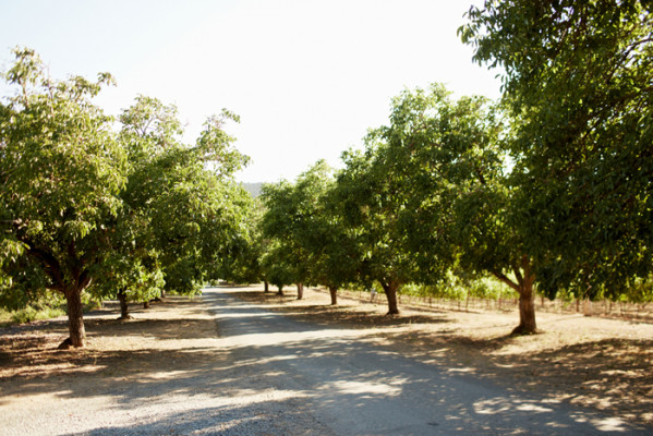 Annadel Estate Winery