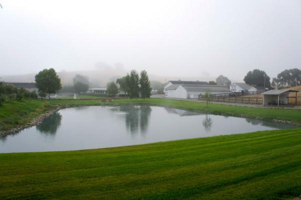 Beaumont Farms