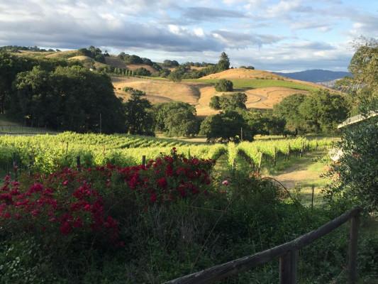 The Highlands Estate