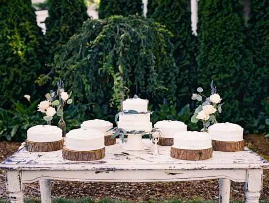 RoxyAnn Weddings at Hillcrest Orchard