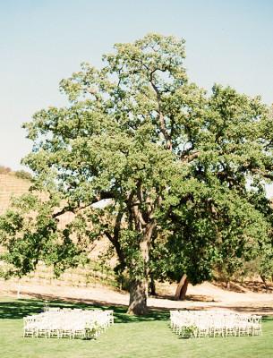 Triunfo Creek Vineyards