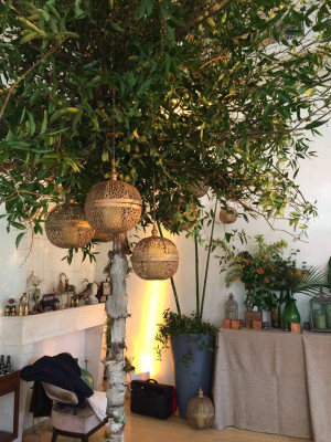 Bouley Botanical