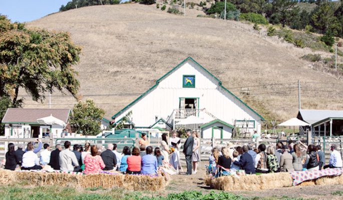 Harley Farms Goat Dairy