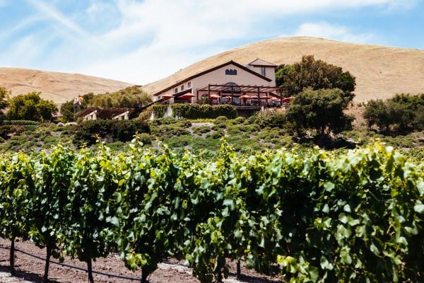 Gloria Ferrer Caves & Vineyards