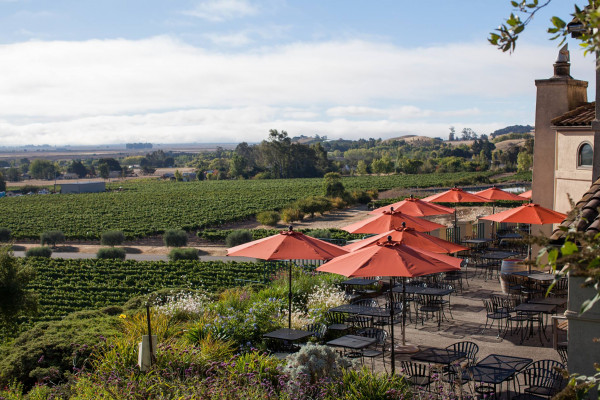 Gloria Ferrer Caves & Vineyards
