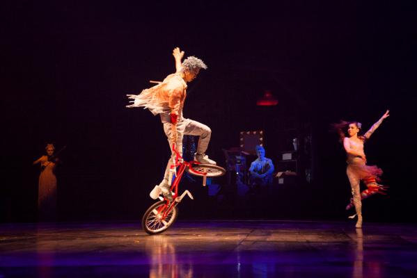 Cirque du Soleil LUZIA –Orlando