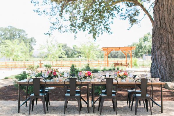 Vineyard Ranch