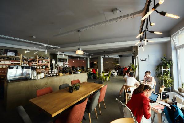 Moose Social Pub