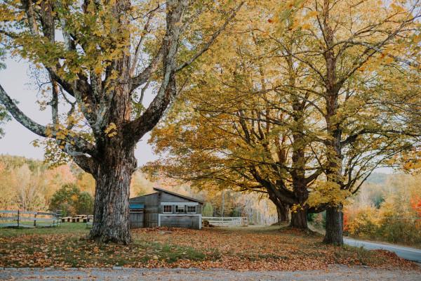 Garden Gate at Haley Farm