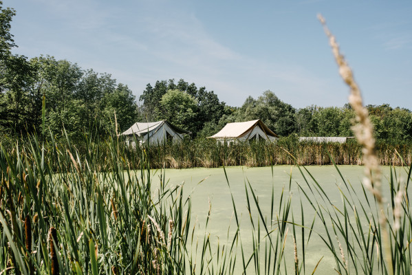 Firelight Camps